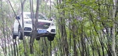 温州车挂树上_越野车温州一越野车挂树上网友调侃臣妾做不