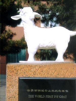 世界上第一只试管羔羊诞生(歷史上的今天.中國)