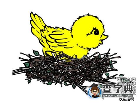 儿童有趣动物绕口令 鸟巢和小鸟