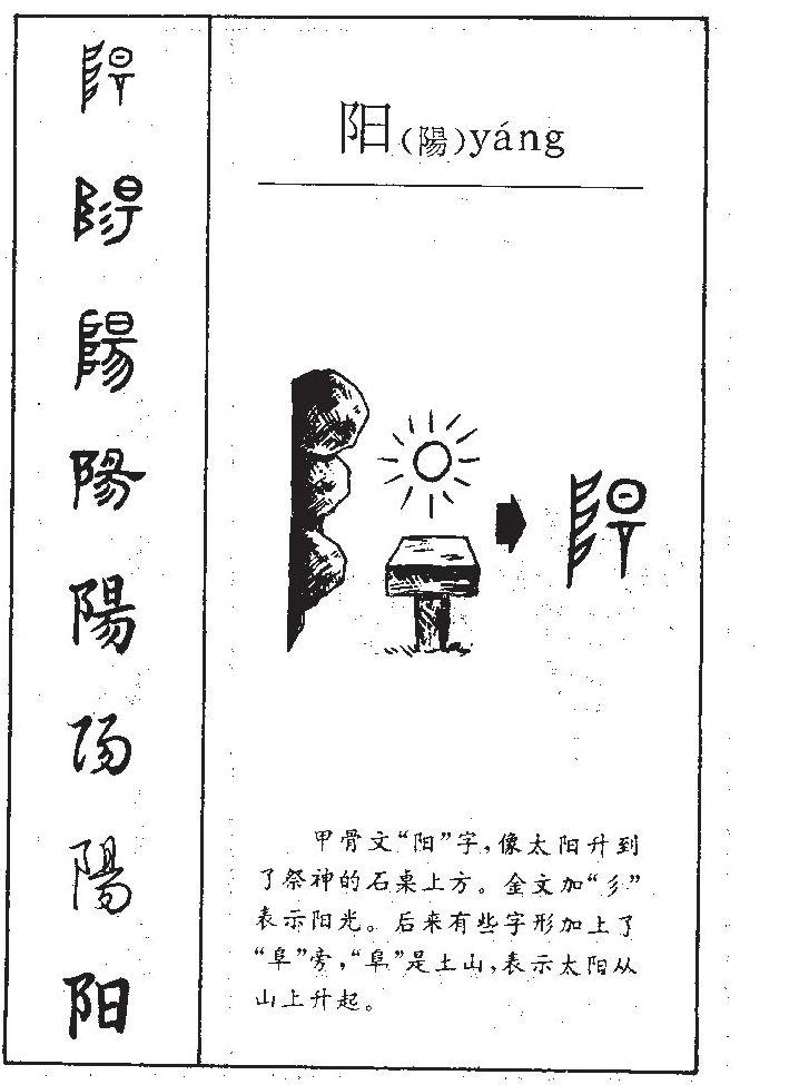 (阳组词)