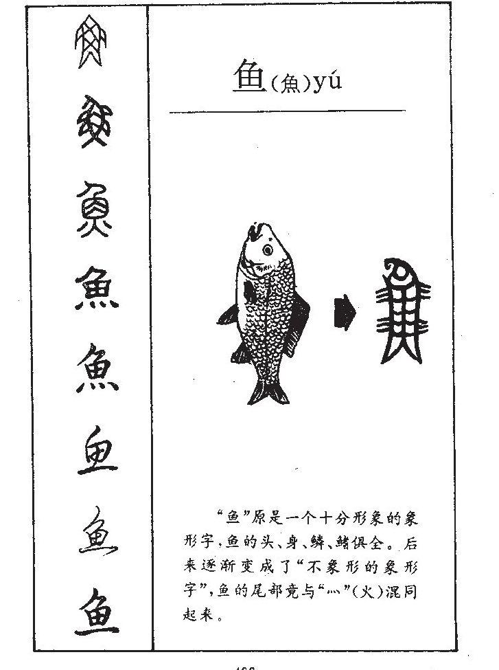 鱼的部首|鱼的拼音|鱼的组词|鱼的意思